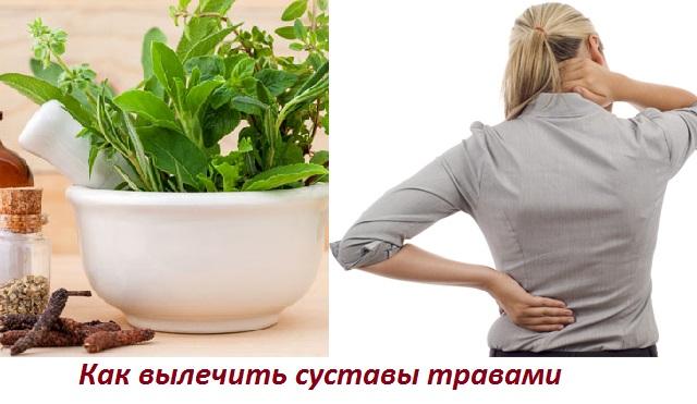 Травы для лечения суставов - Фитотерапевта Халисат Сулейманова
