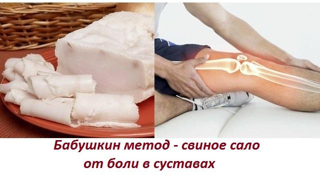 Лечение коленных суставов свиным жиром