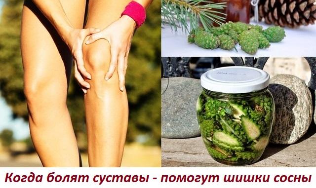 Еловые шишки и боли в суставах
