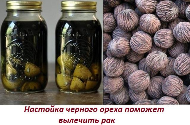 Лечение рака кедровым маслом и другое