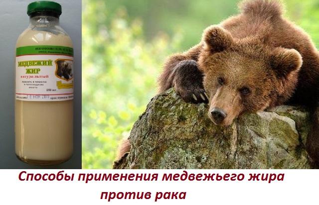 Самые эффективные способы лечение рака (онкологии) легких народными средствами: как применять медвежью желчь и барсучий жир от рака легких
