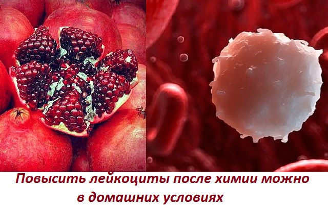 Повысить лейкоциты быстро народные средства