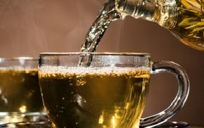 Володушка золотистая лечебные свойства и противопоказания отзывы